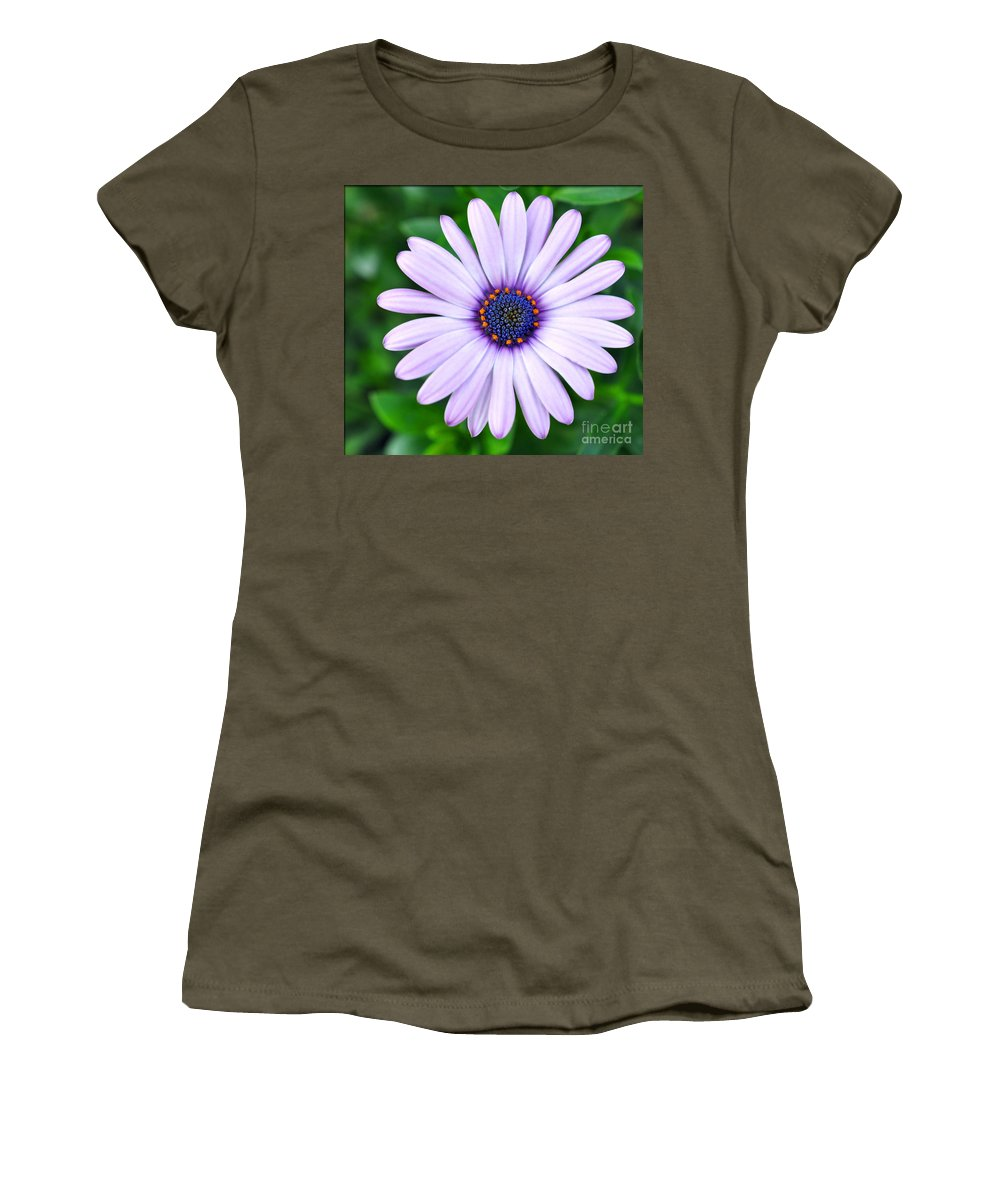 Spring Women's T-Shirt featuring the photograph Light Purple Daisy by Brittany Horton