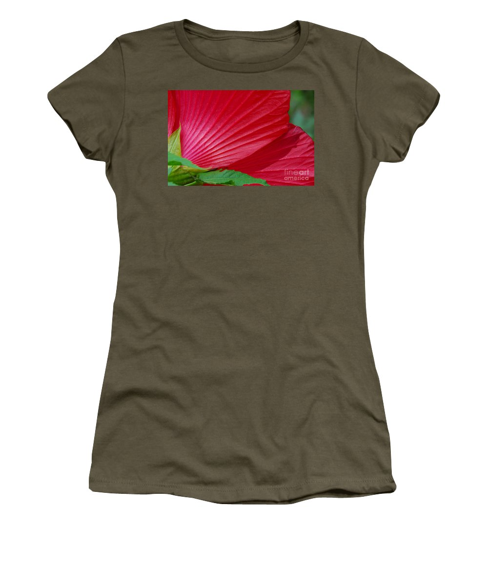 Flora Women's T-Shirt featuring the photograph Lines Of Nature by Cindy Manero