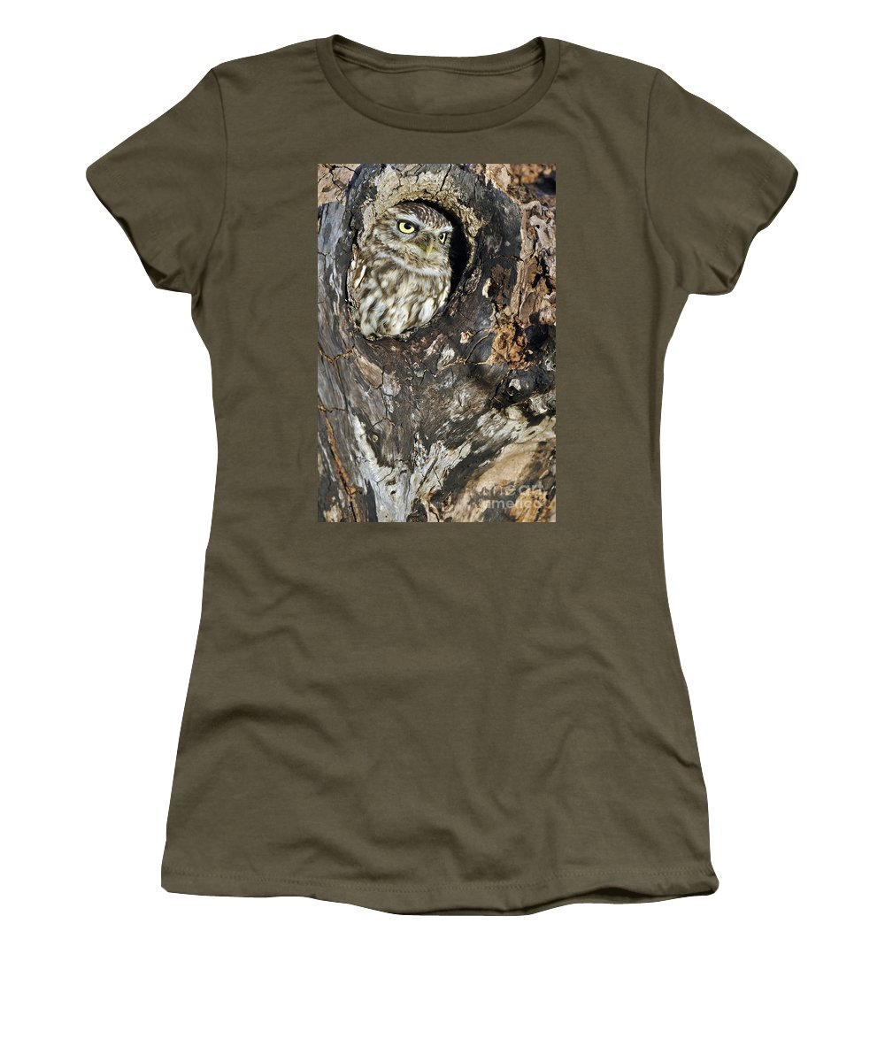 Little Owl Women's T-Shirt featuring the photograph Little Owl 3 by Arterra Picture Library