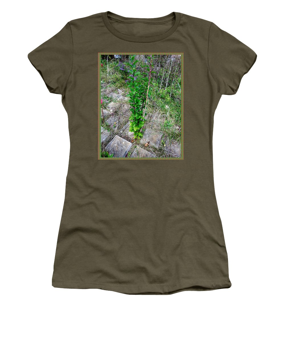 Nature Women's T-Shirt featuring the mixed media Lone Green Sapling Is The Cheer Leader Of The Flock Asking Humans To Leave Some Space For Them   by Navin Joshi
