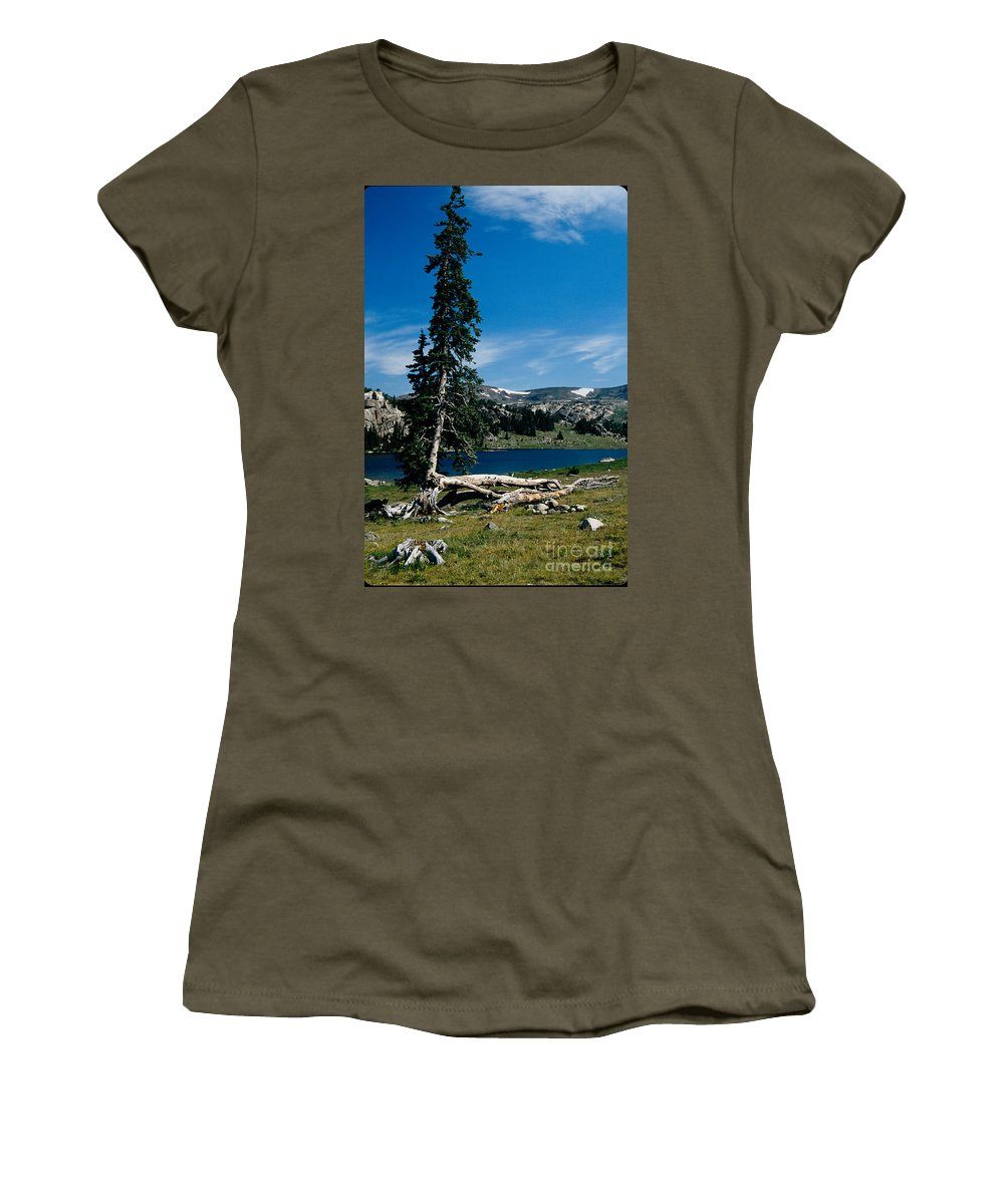 Mountains Women's T-Shirt (Athletic Fit) featuring the photograph Lone Tree At Pass by Kathy McClure