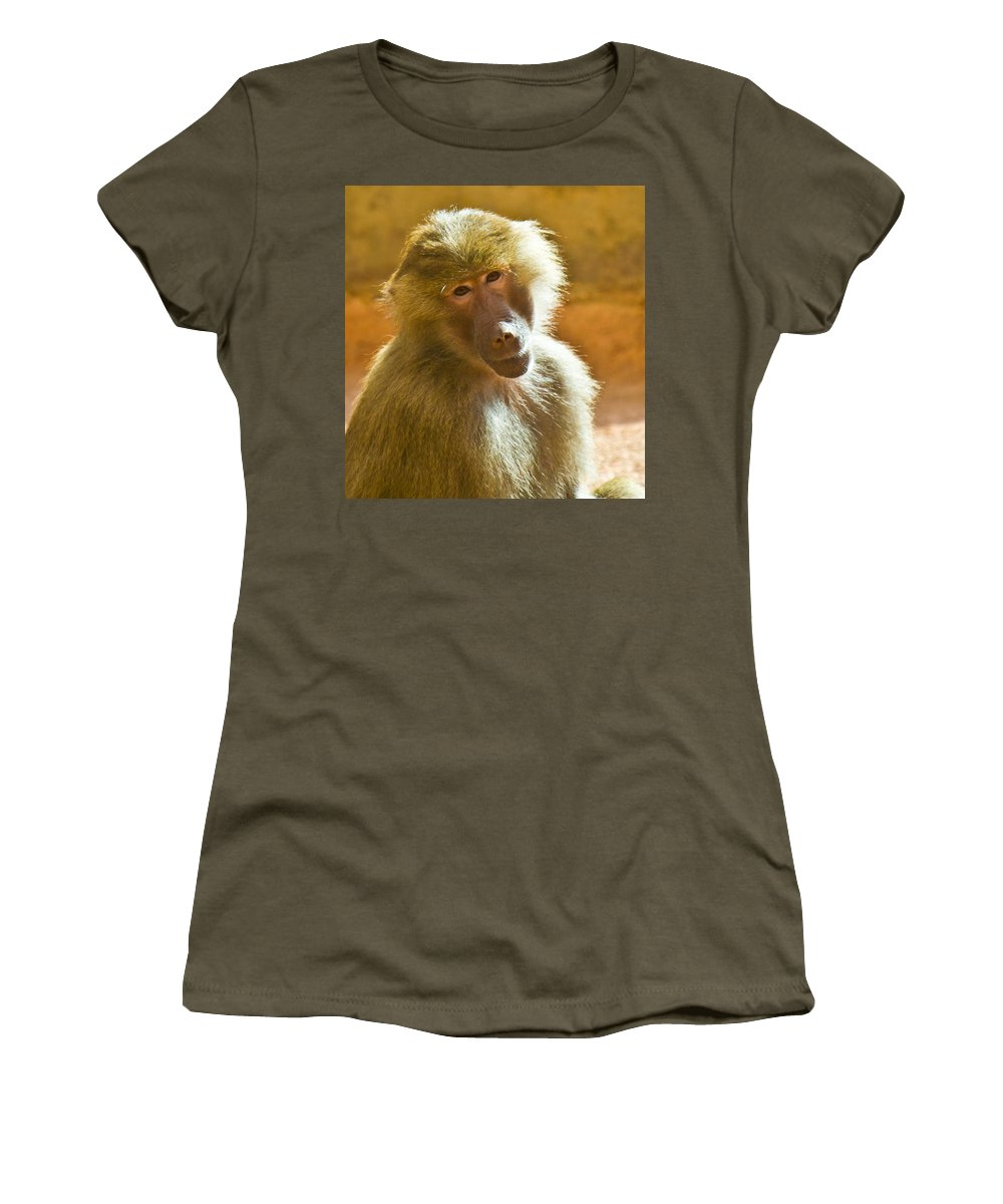 Baboon Women's T-Shirt featuring the photograph Looking At You. by Jonny D