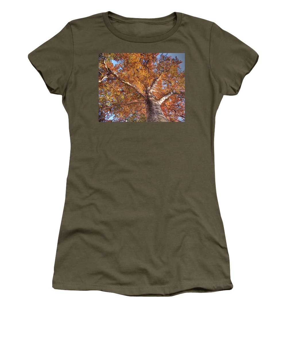 Azerbaijan Women's T-Shirt (Athletic Fit) featuring the photograph Looking Up by Emily Kay
