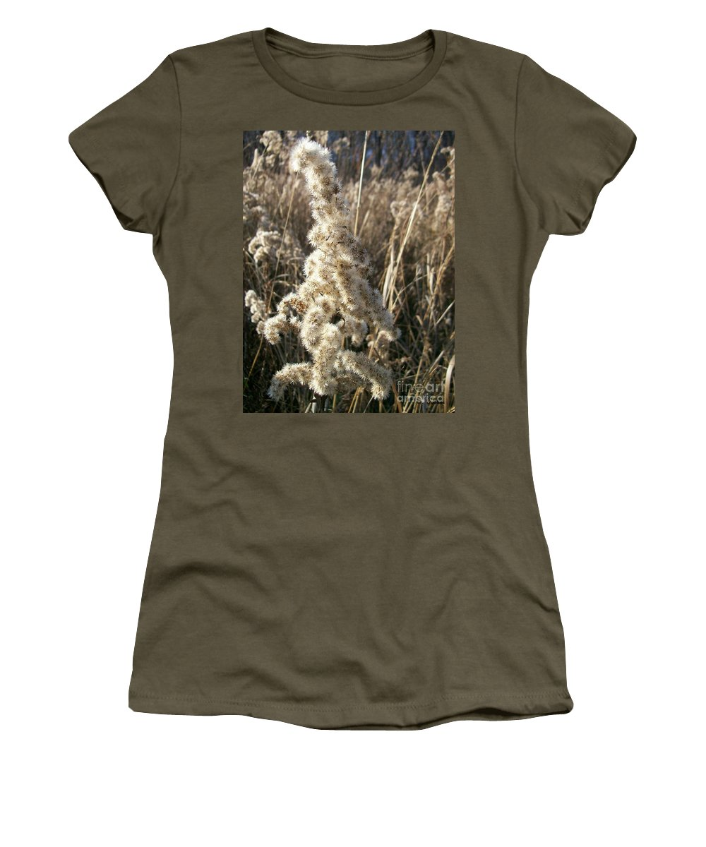 Weed Women's T-Shirt featuring the photograph Looks Like Cotton by Sara Raber