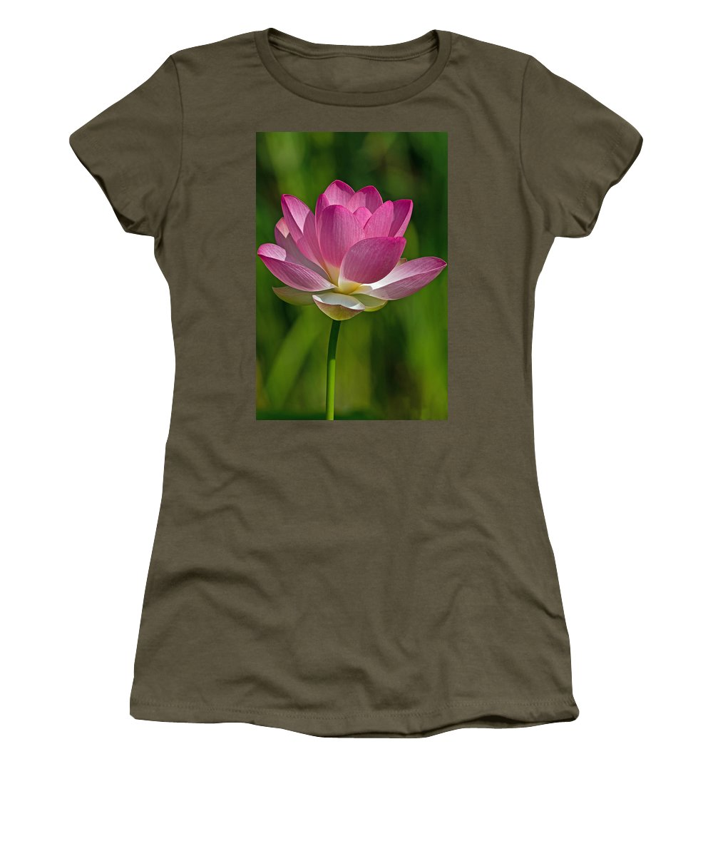 Lotus Women's T-Shirt featuring the photograph Lotus Bloom by Jerry Gammon