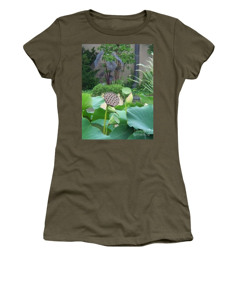 Water Lilies Women's T-Shirt (Athletic Fit) featuring the photograph Lotus Flower In Lily Pond by Eric Schiabor