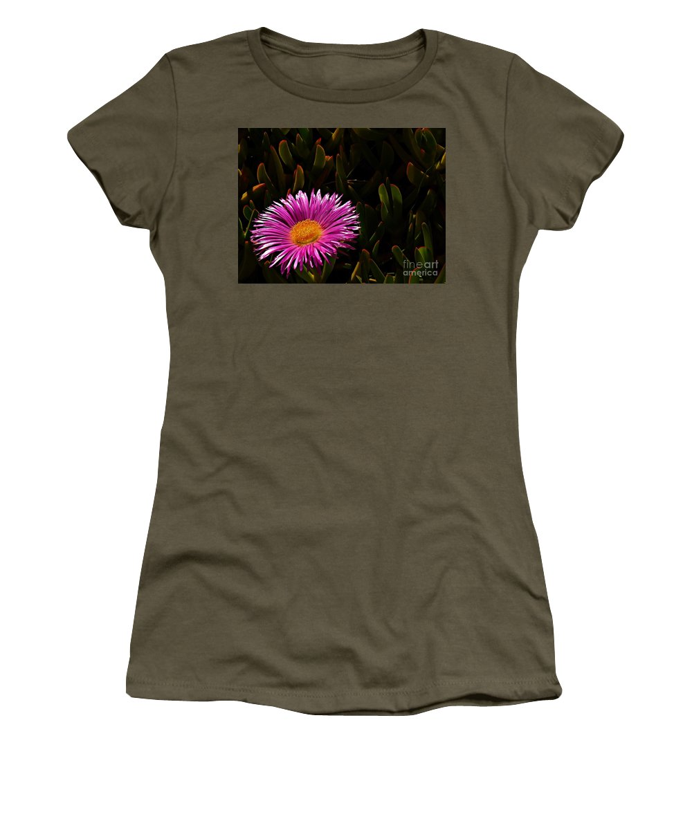 Hottentot Fig Marigold Women's T-Shirt featuring the photograph Loving The Sun by Clare Bevan