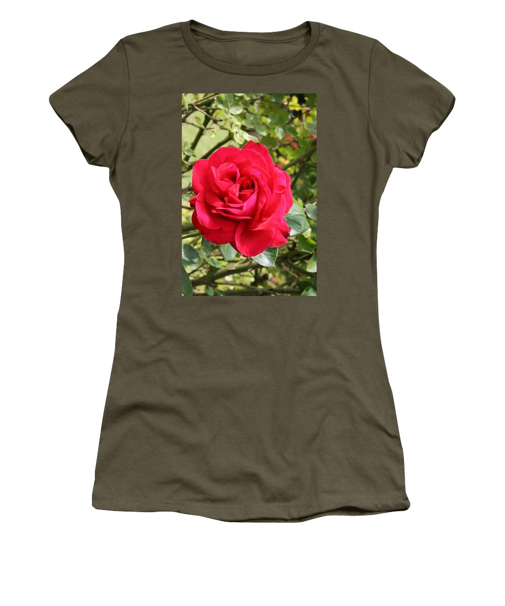 Rose Women's T-Shirt featuring the photograph Lovely Red Rose by Christiane Schulze Art And Photography