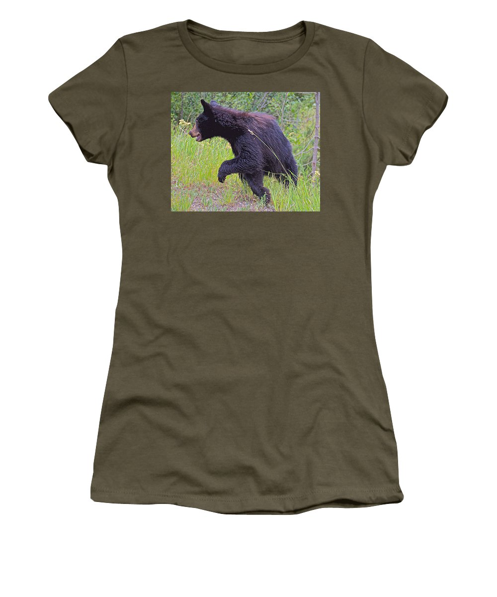 Lunging Black Bear Cub Near Road In Grand Teton National Park Women's T-Shirt featuring the photograph Lunging Black Bear Near Road In Grand Teton National Park-wyoming  by Ruth Hager