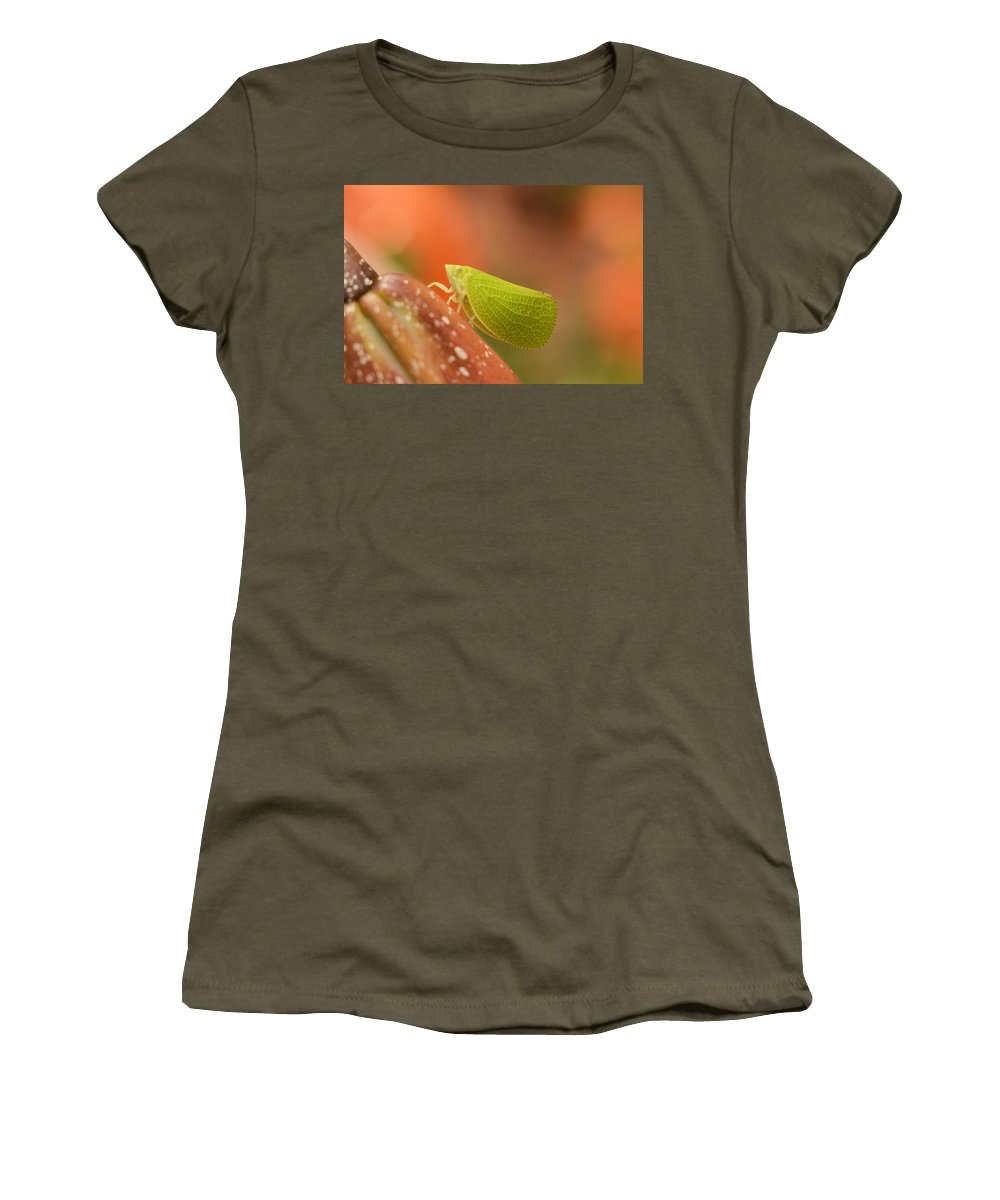 Leaf Women's T-Shirt (Athletic Fit) featuring the photograph Making Like A Leaf by Bonfire Photography