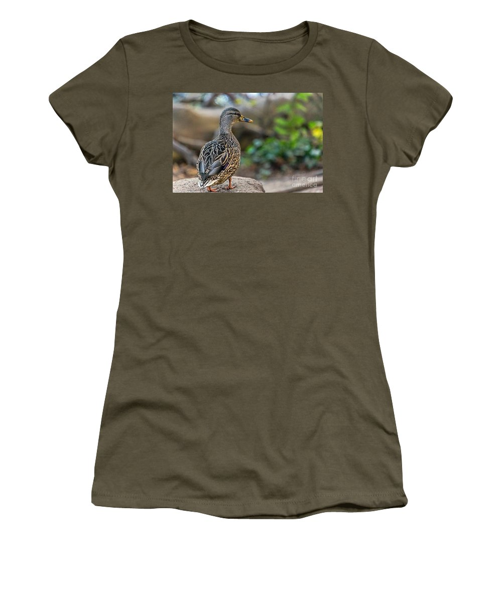 Anas Platyrhynchos Women's T-Shirt featuring the photograph Mallard Hen Observing by Kate Brown
