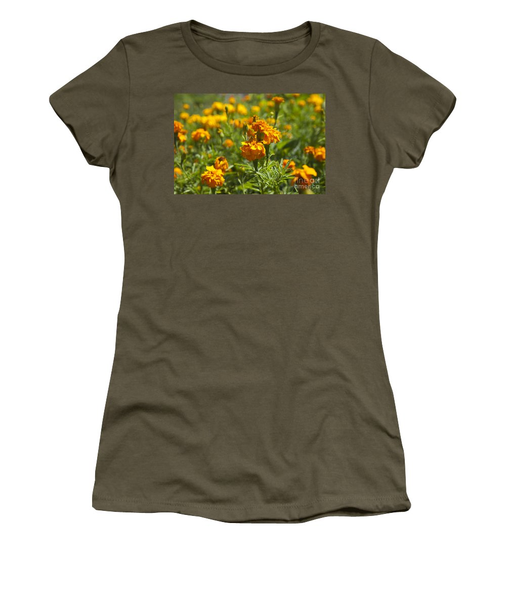 Marigold Women's T-Shirt featuring the photograph Marigold Flowers by Jason O Watson