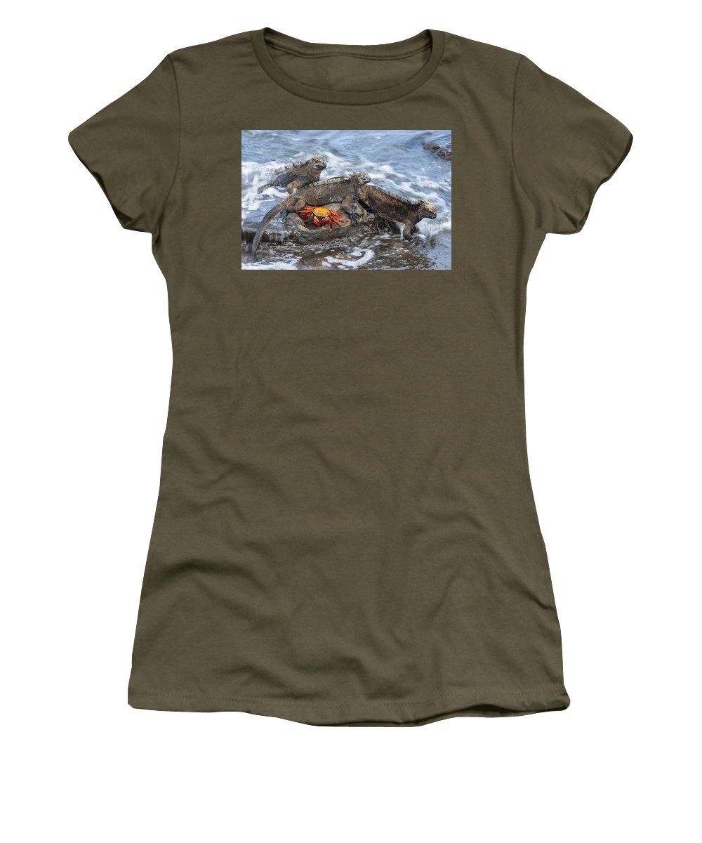 Tui De Roy Women's T-Shirt featuring the photograph Marine Iguana Trio And Sally Lightfoot by Tui De Roy