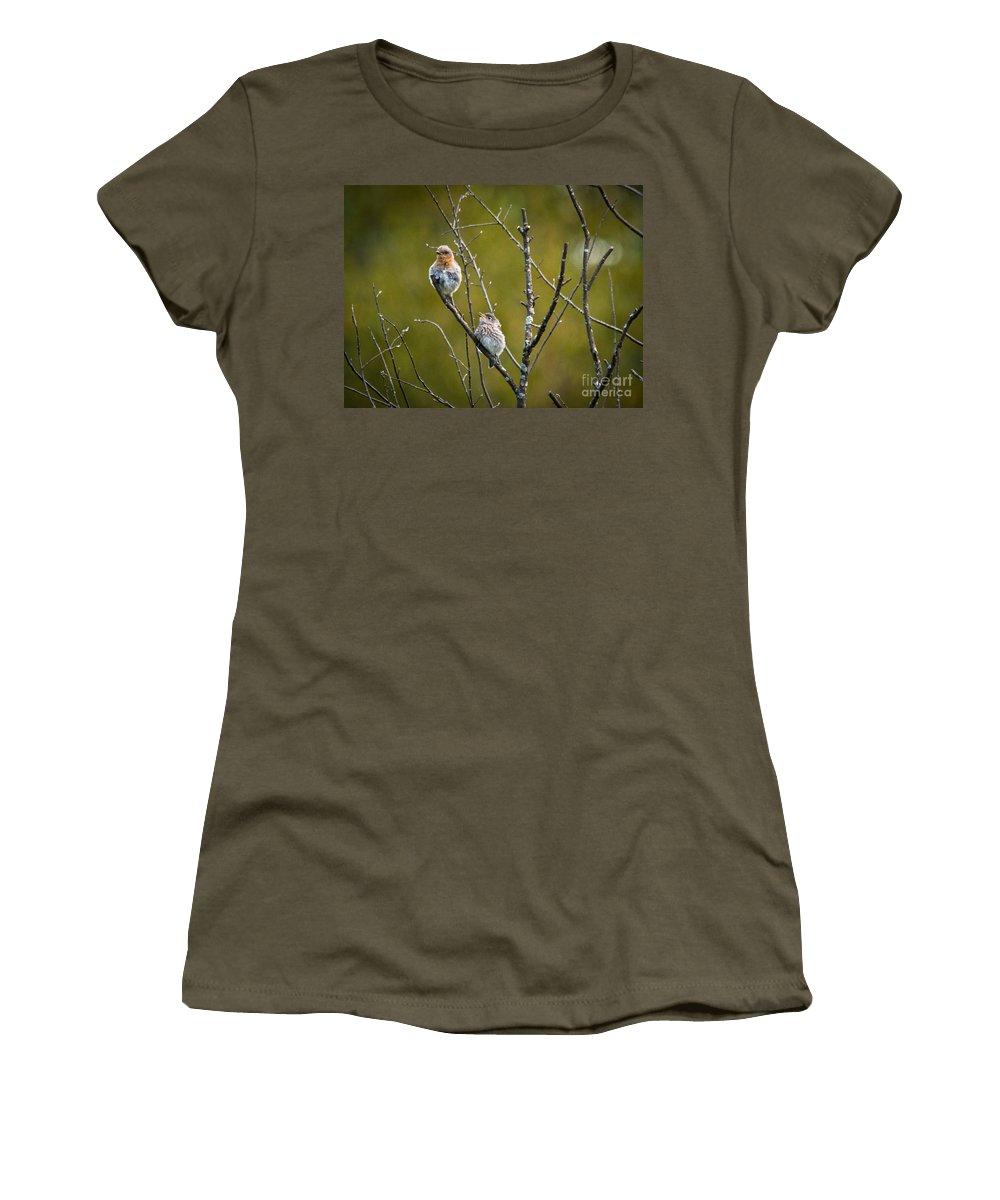 Bluebird Women's T-Shirt featuring the photograph Momma Bluebird And Baby by Cheryl Baxter