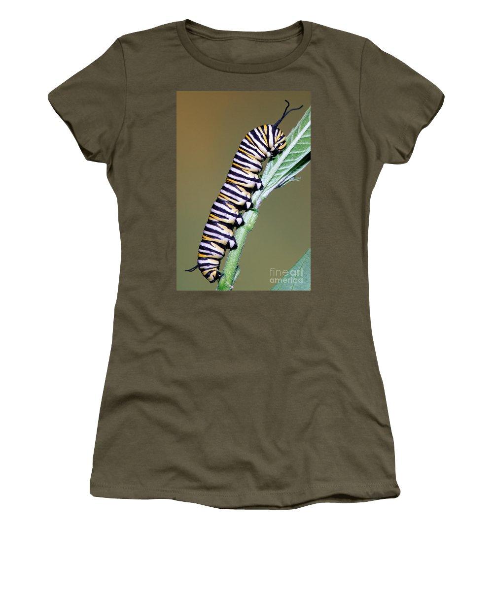 Animal Women's T-Shirt featuring the photograph Monarch Butterfly Caterpillar by Millard H. Sharp