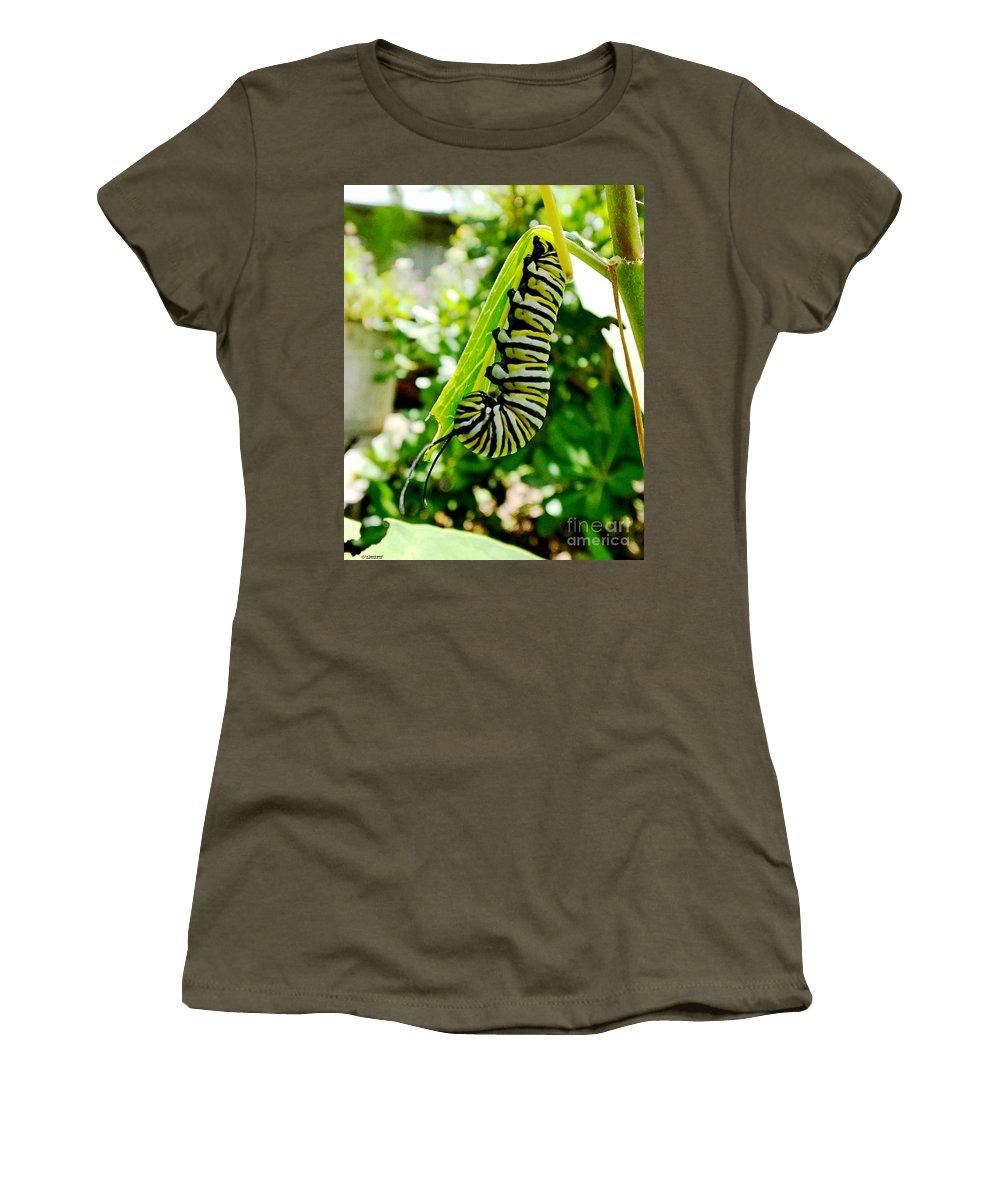 Caterpillar Women's T-Shirt featuring the photograph Monarch Caterpillar 5 by Lizi Beard-Ward