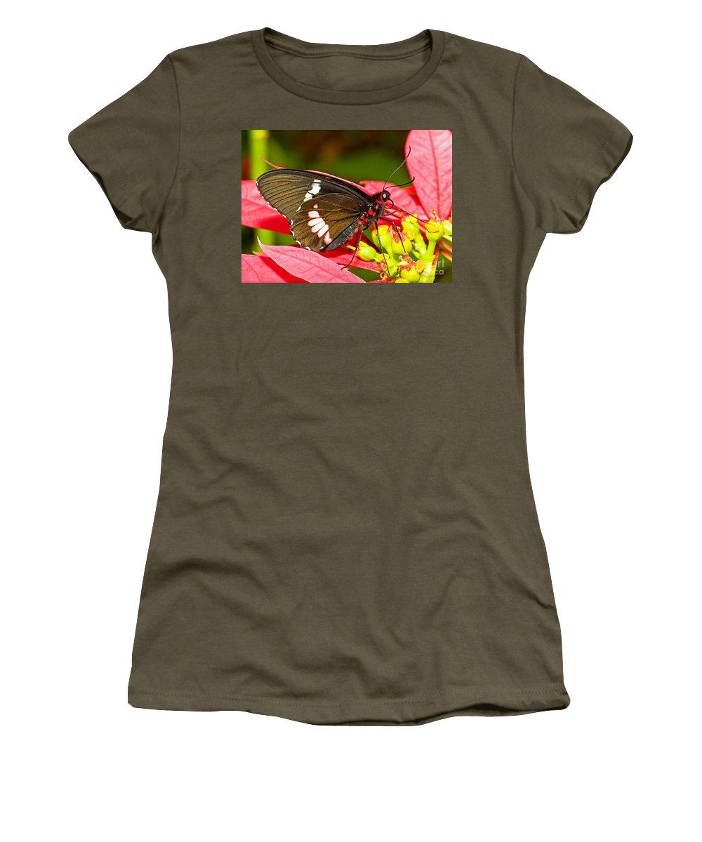 Tropical Butterfly Women's T-Shirt featuring the photograph Montezuma Cattleheart Butterfly by Millard H. Sharp
