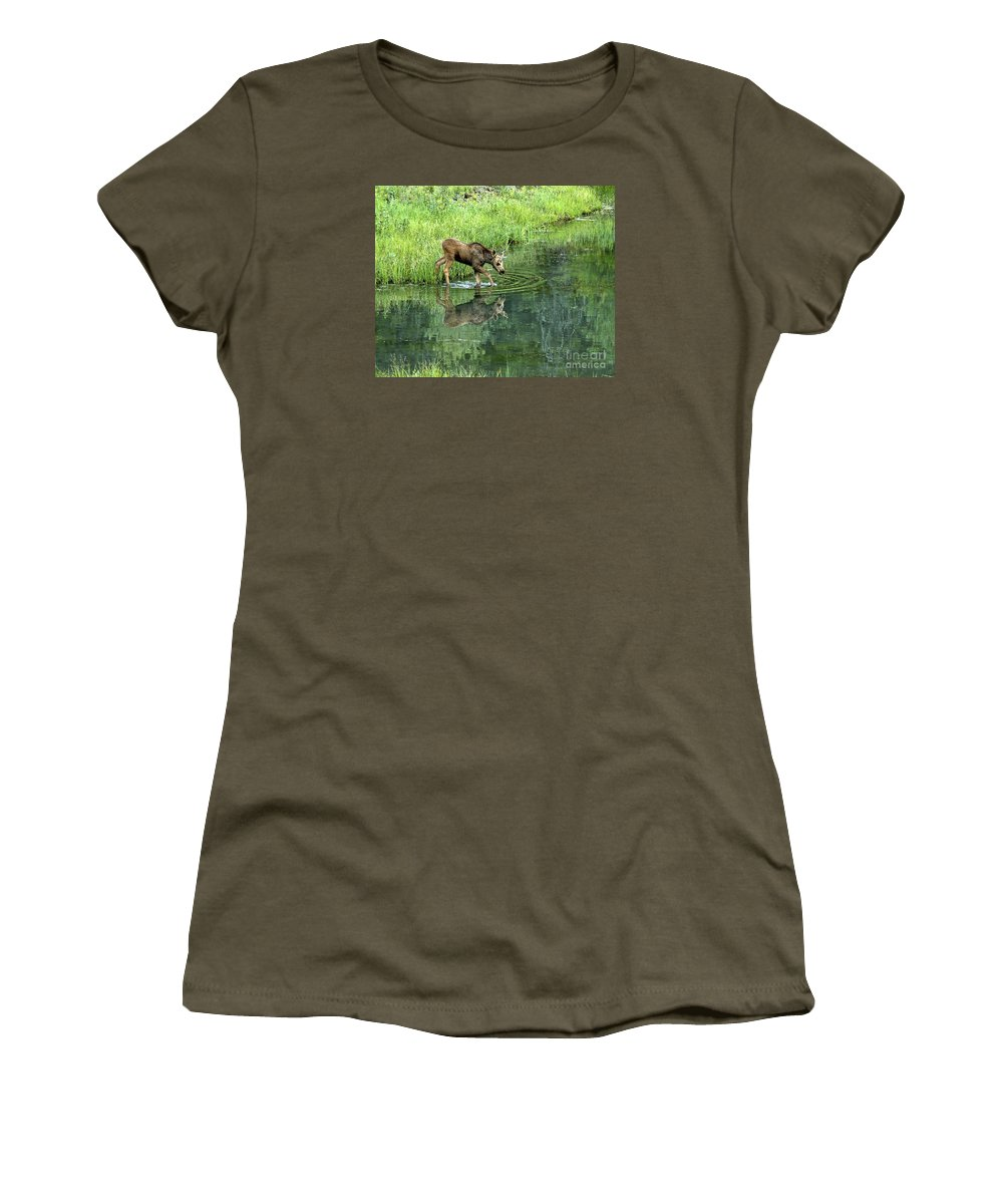 Moose Women's T-Shirt (Athletic Fit) featuring the photograph Moose Calf Testing The Water by Timothy Flanigan