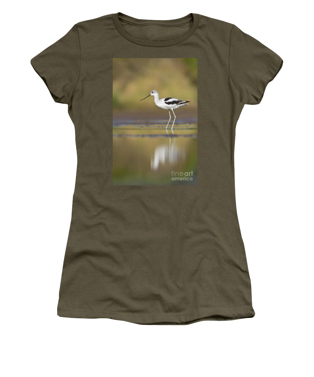 Bird Women's T-Shirt featuring the photograph Morning Avocet by Bryan Keil
