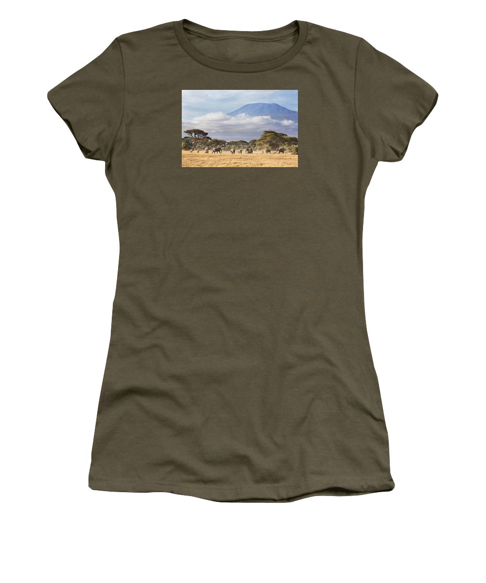 Nis Women's T-Shirt featuring the photograph Mount Kilimanjaro Amboseli by Richard Garvey-Williams
