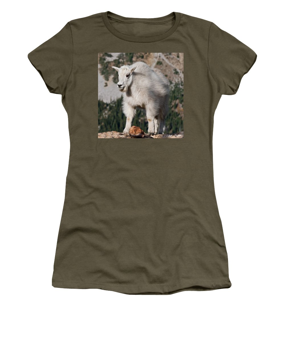 Alpine Women's T-Shirt (Athletic Fit) featuring the photograph Mountain Goat Kid Standing On A Boulder by Jeff Goulden