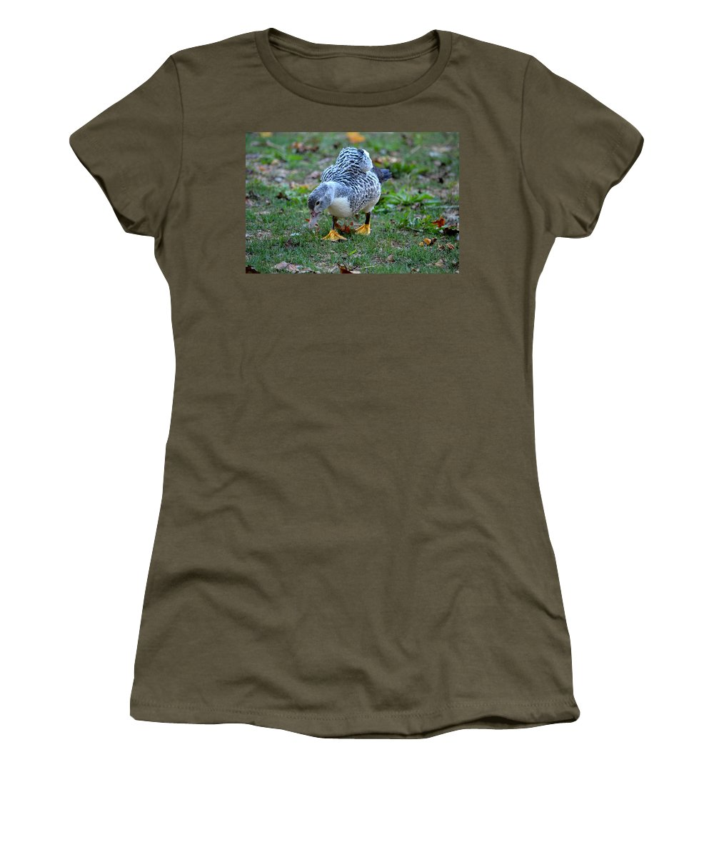 Muscovy 14-6 Women's T-Shirt (Athletic Fit) featuring the photograph Muscovy 14-6 by Maria Urso