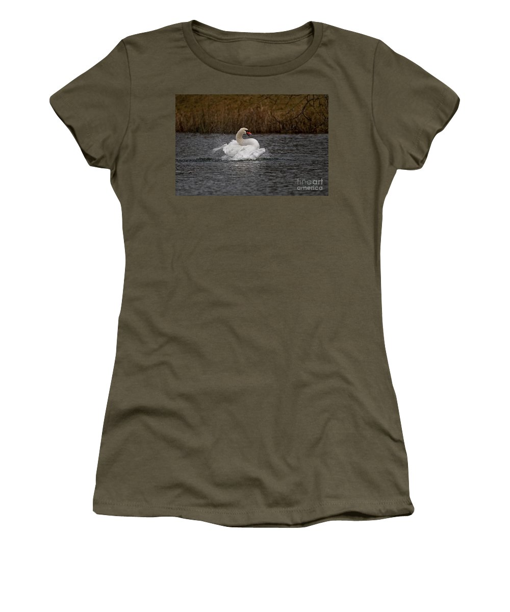 Mute Swan Women's T-Shirt featuring the photograph Mute Swan Pictures 97 by World Wildlife Photography