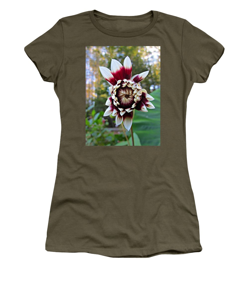Dahlia Women's T-Shirt (Athletic Fit) featuring the photograph New Dahlia by MTBobbins Photography