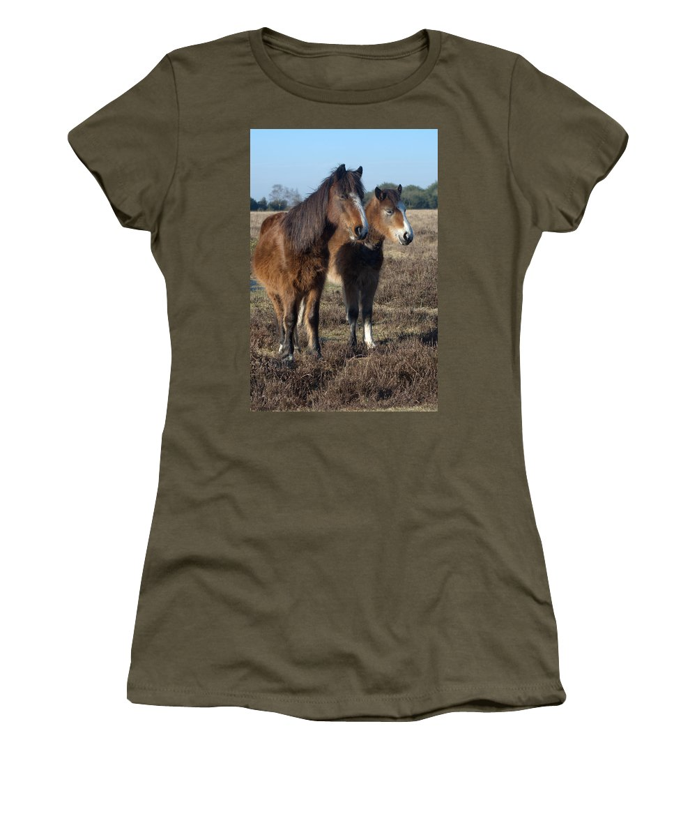 New Forest Pony Women's T-Shirt (Athletic Fit) featuring the photograph New Forest Ponies by Chris Day