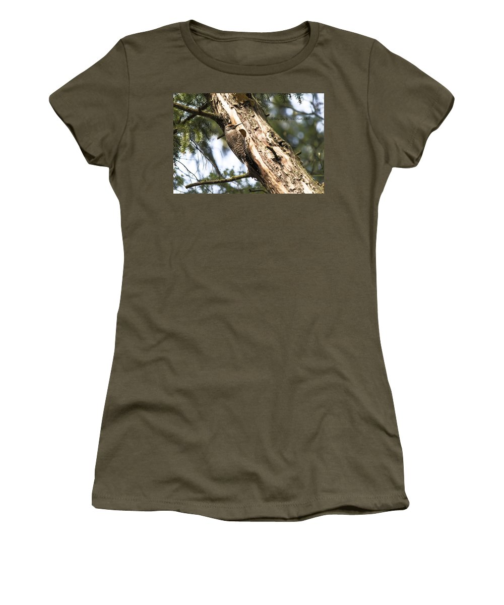 Flicker Women's T-Shirt featuring the photograph Northern Red Shafted Flicker by Safe Haven Photography Northwest