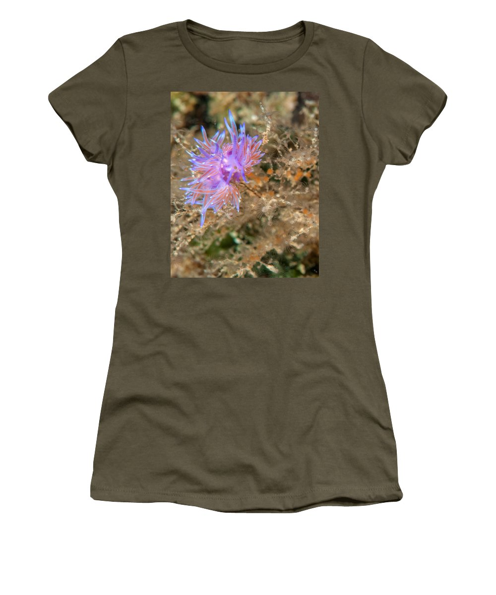 Carnivore Women's T-Shirt featuring the photograph Nudibranch 2 by Roy Pedersen