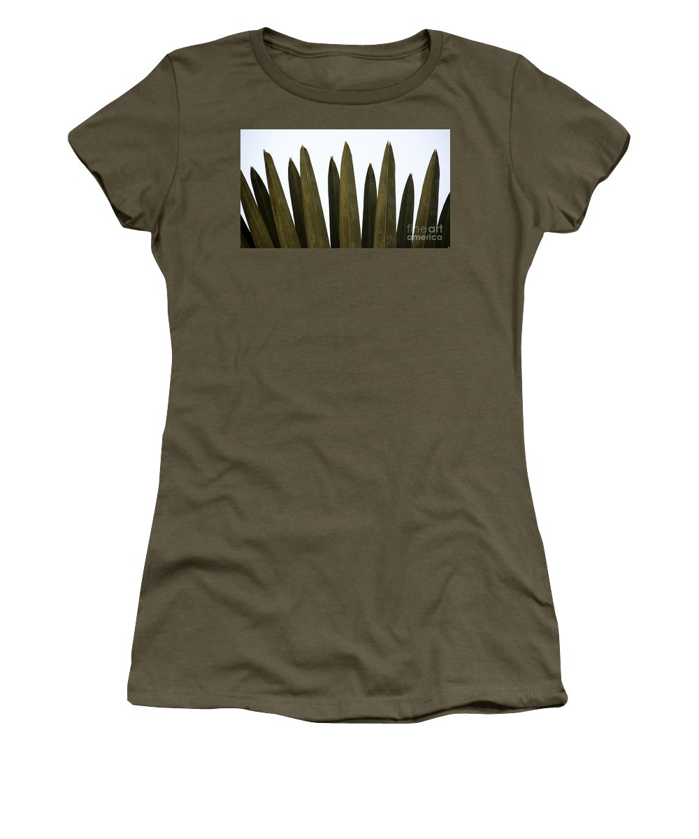 Olive Women's T-Shirt featuring the photograph Olive Palm by Joshua Roberts