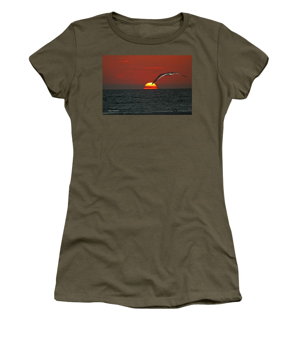 Black Skimmers Women's T-Shirt featuring the photograph One Black Skimmers At Sunset by Tom Janca
