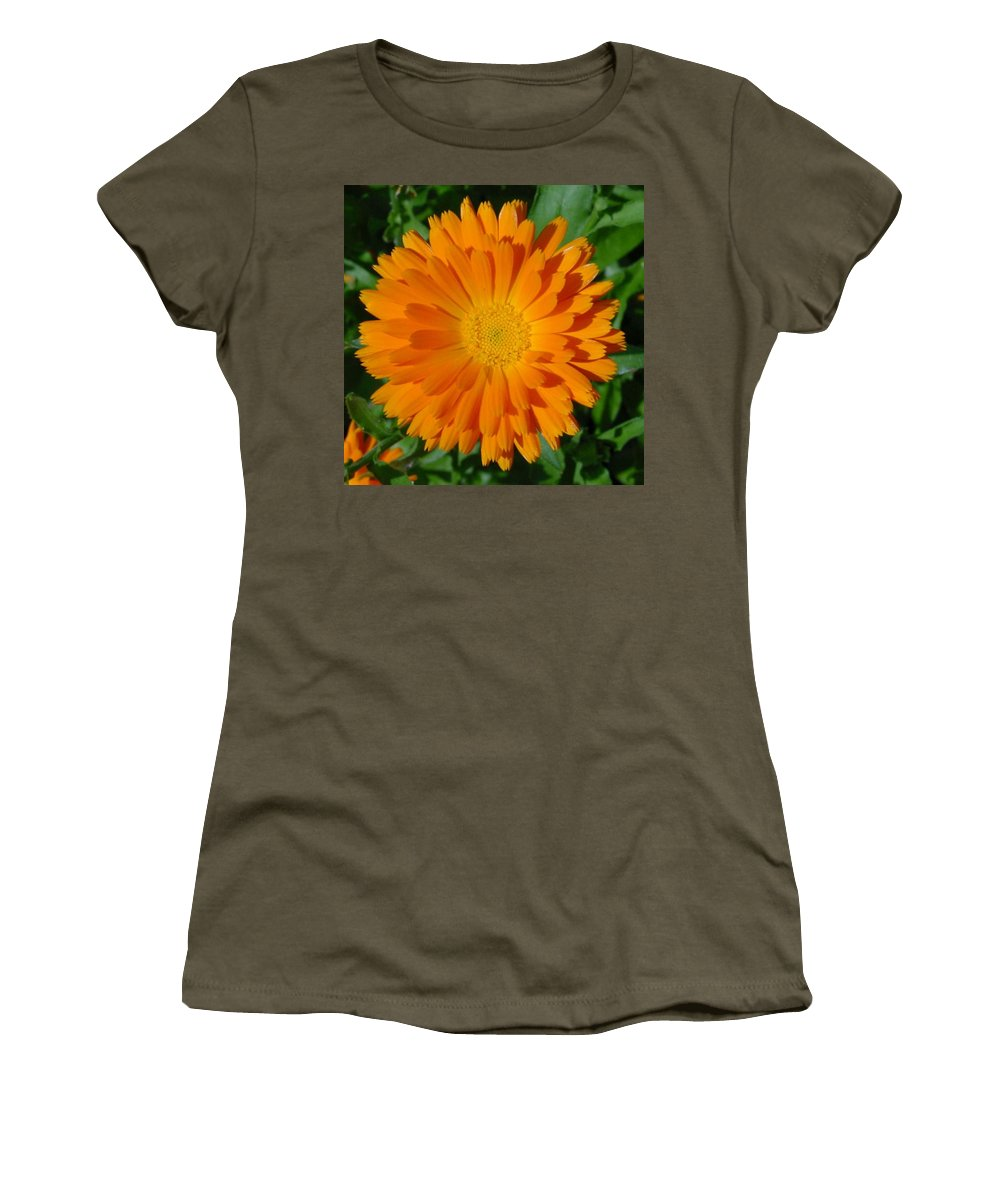 Flower Women's T-Shirt (Athletic Fit) featuring the photograph Orange Marigold Close Up With Garden Background by Taiche Acrylic Art