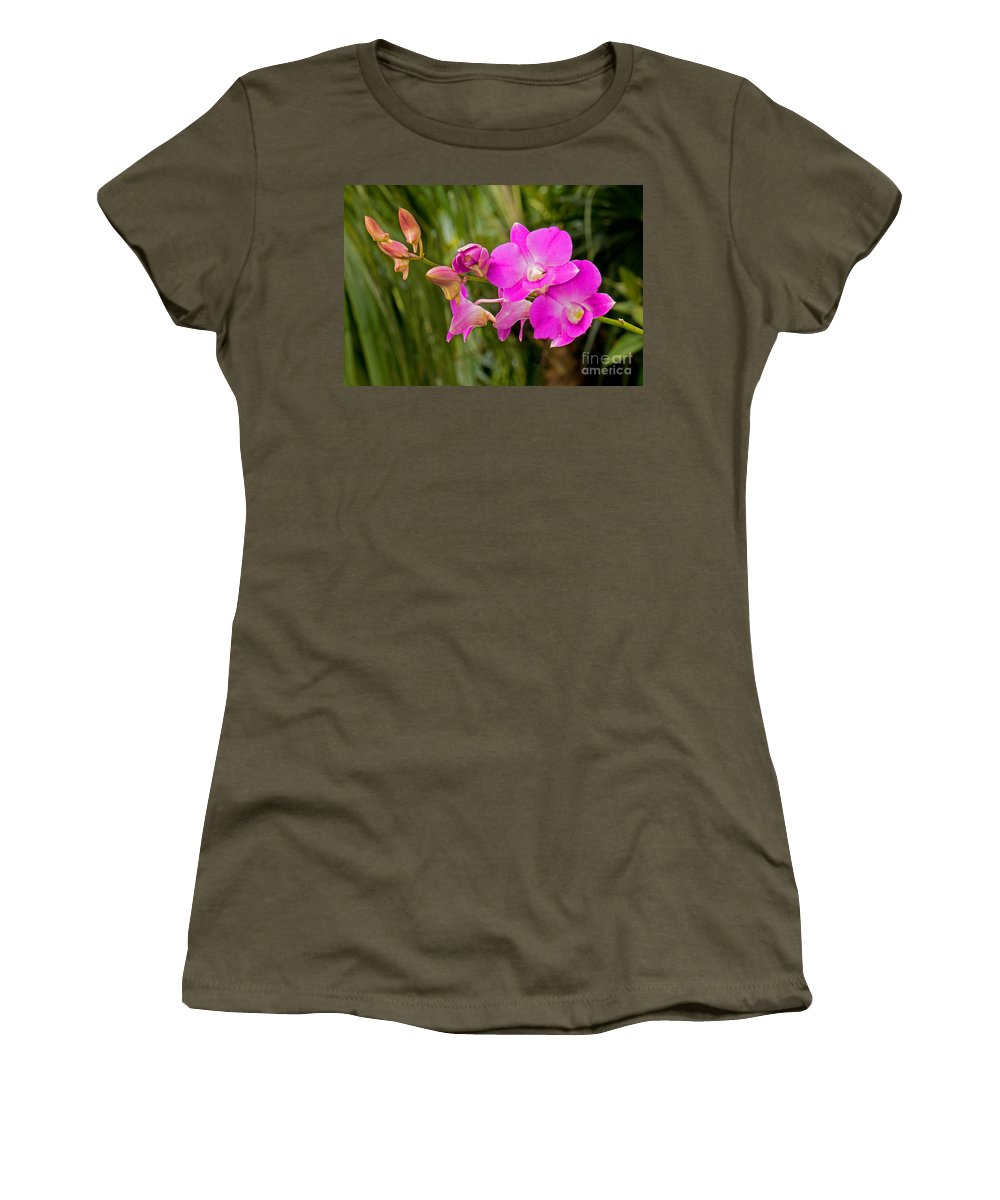 Nature Women's T-Shirt featuring the photograph Orchid Dendrobium by Millard H. Sharp