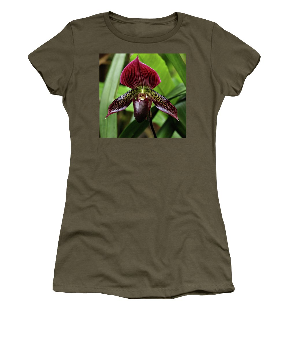 Orchid Women's T-Shirt featuring the photograph Orchid by Sandy Keeton