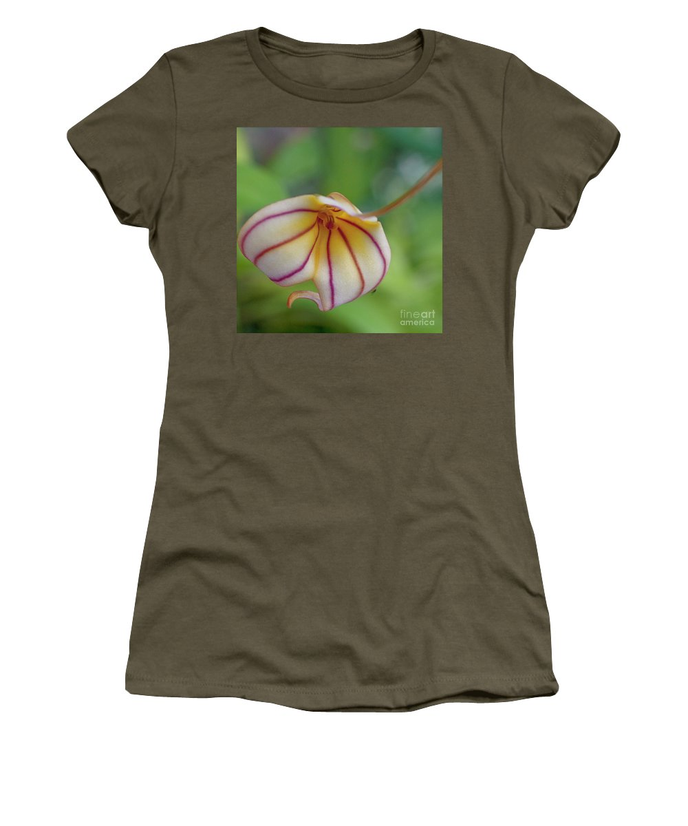 Orchid Women's T-Shirt featuring the photograph Orchids - Masdevallia Hybrid by Heiko Koehrer-Wagner