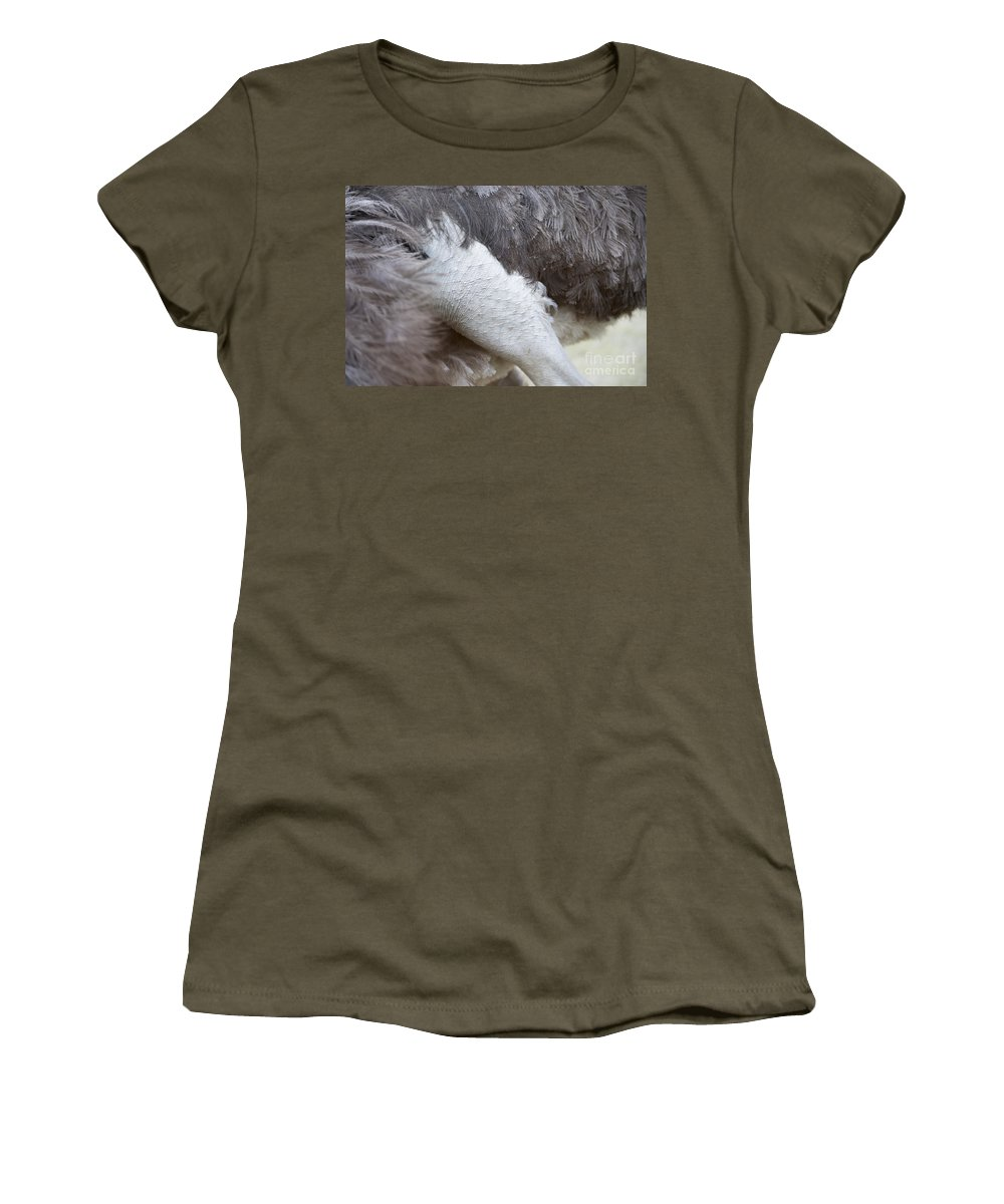 Ostrich Women's T-Shirt featuring the photograph Ostrich by Mats Silvan