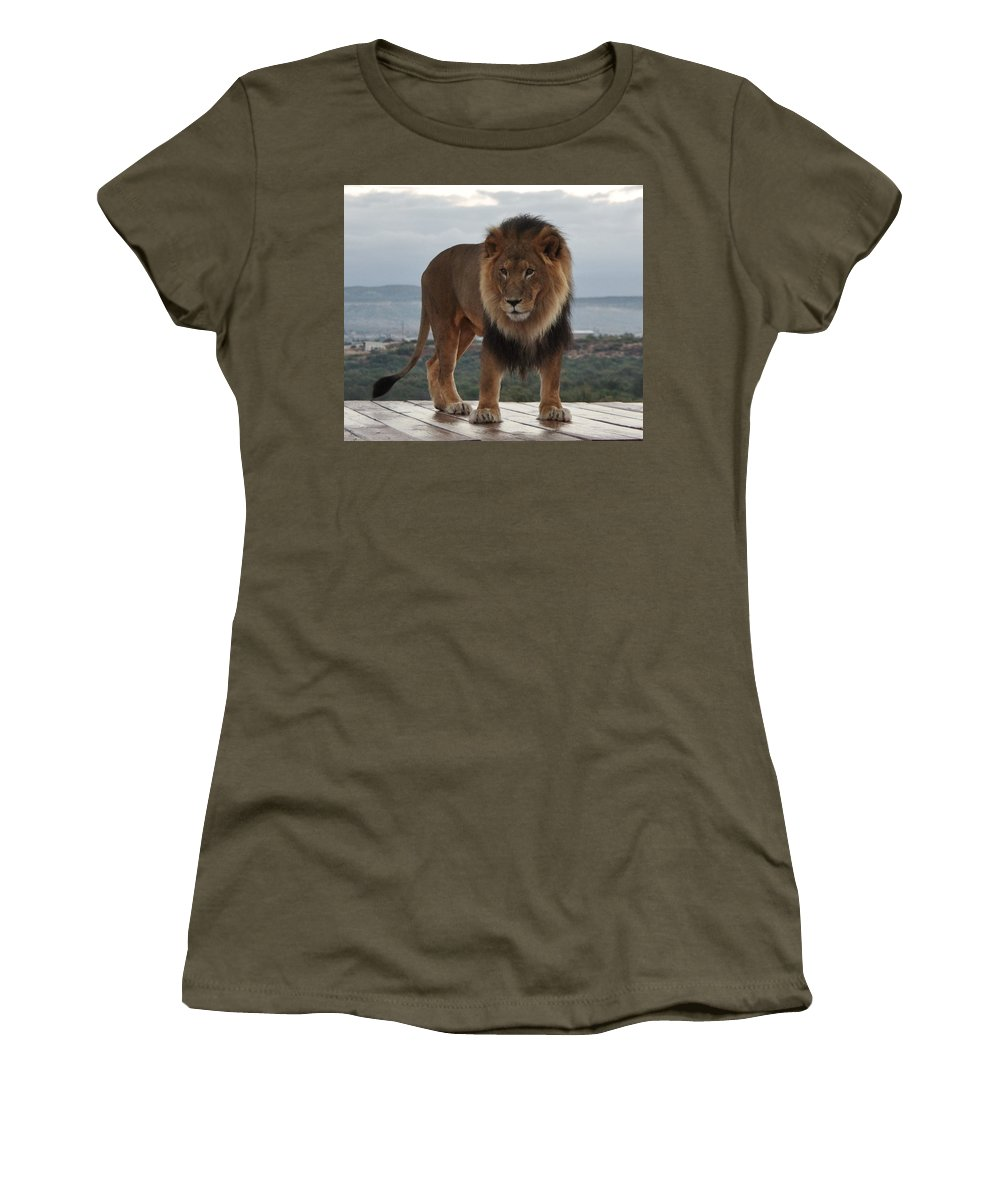 Out Of Africa Women's T-Shirt featuring the photograph Out Of Africa Lion 3 by Phyllis Spoor