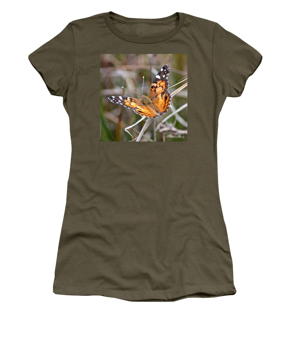 Butterfly Women's T-Shirt (Athletic Fit) featuring the photograph Painted Lady Square by Carol Groenen