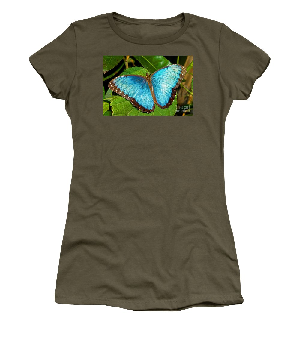 Nature Women's T-Shirt featuring the photograph Peleides Blue Morpho by Millard H. Sharp
