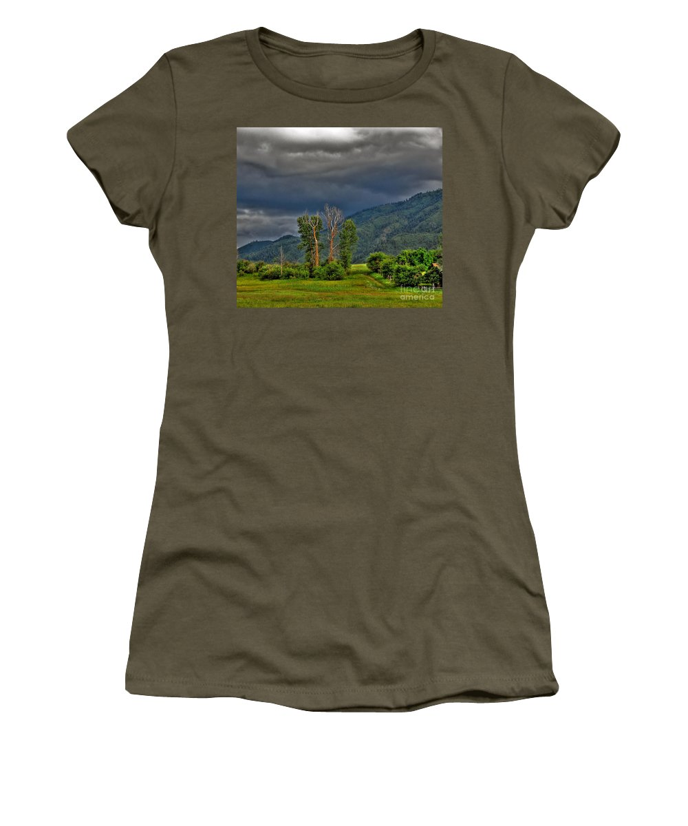 Garden Valley Women's T-Shirt (Athletic Fit) featuring the photograph Petes Trees by Sam Rosen