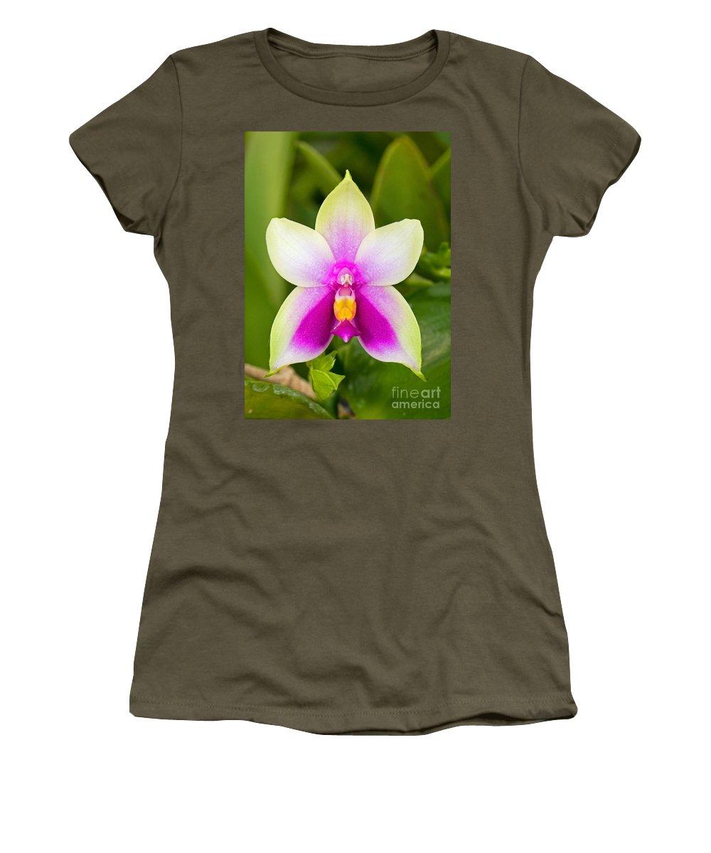 Nature Women's T-Shirt featuring the photograph Phalaenopsis Bellina by Millard H. Sharp