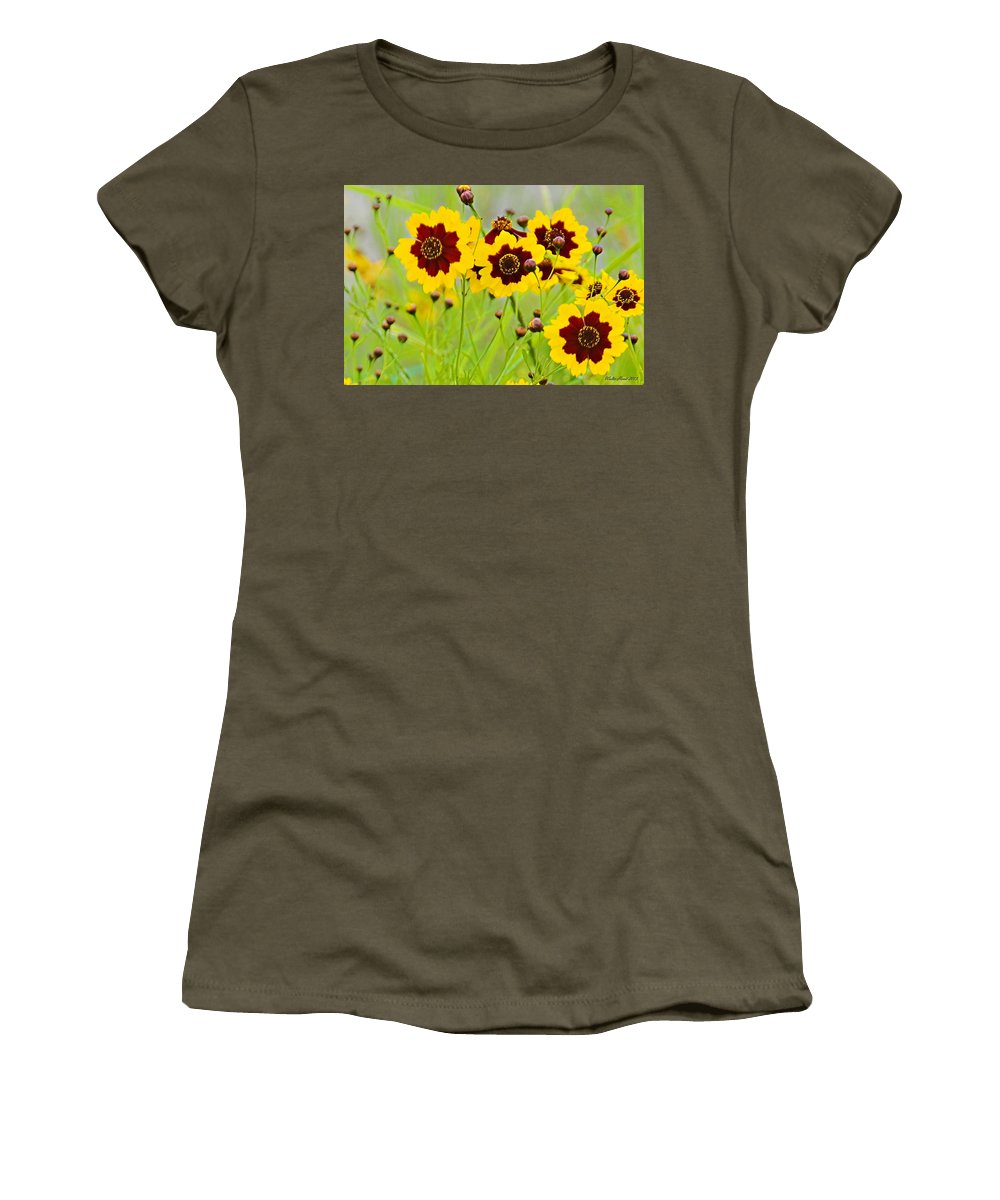 Plains Coreopsis Women's T-Shirt featuring the photograph Plains Coreopsis by Walter Herrit