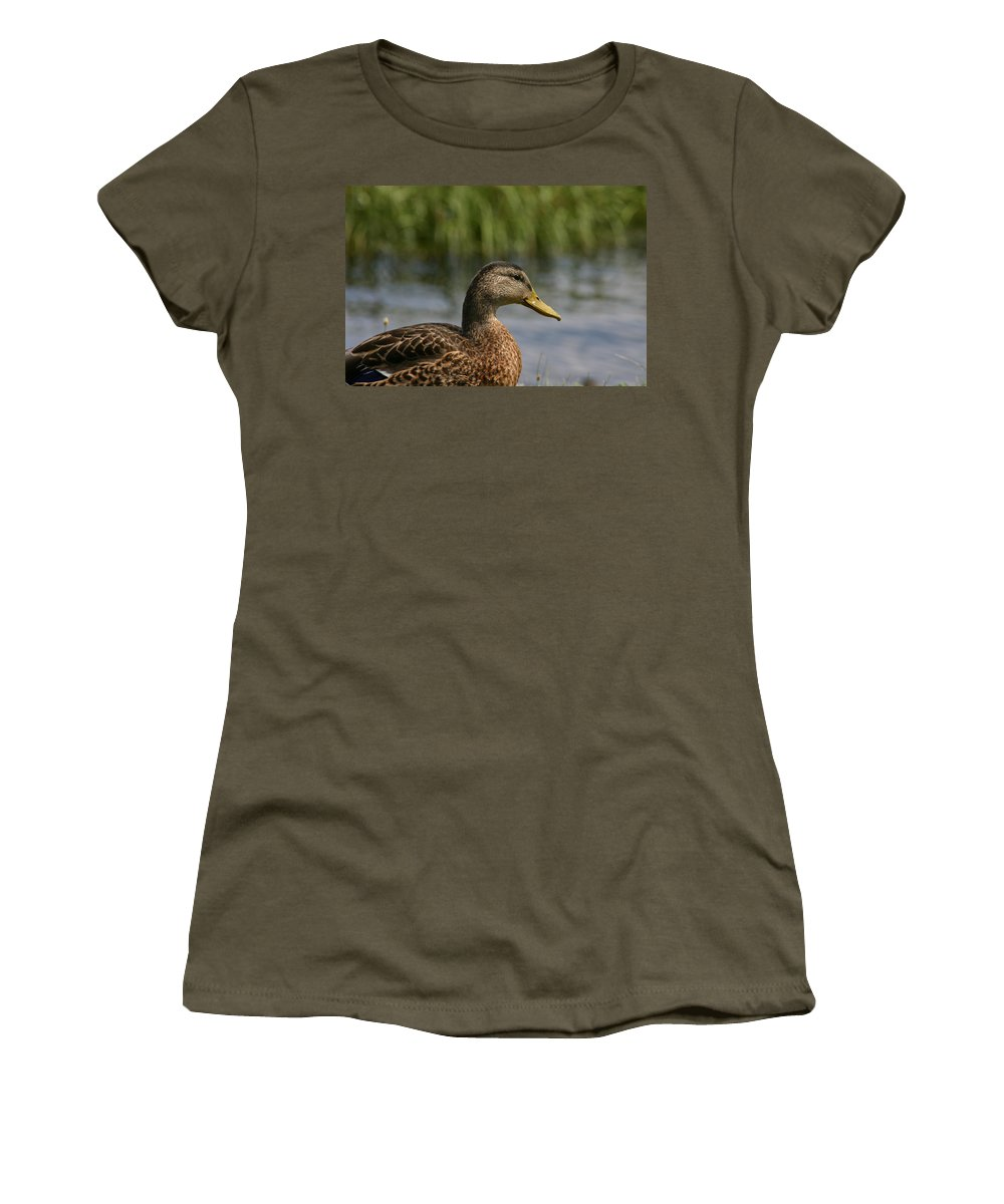 Duck Women's T-Shirt featuring the photograph Pondering A Swim by Denyse Duhaime