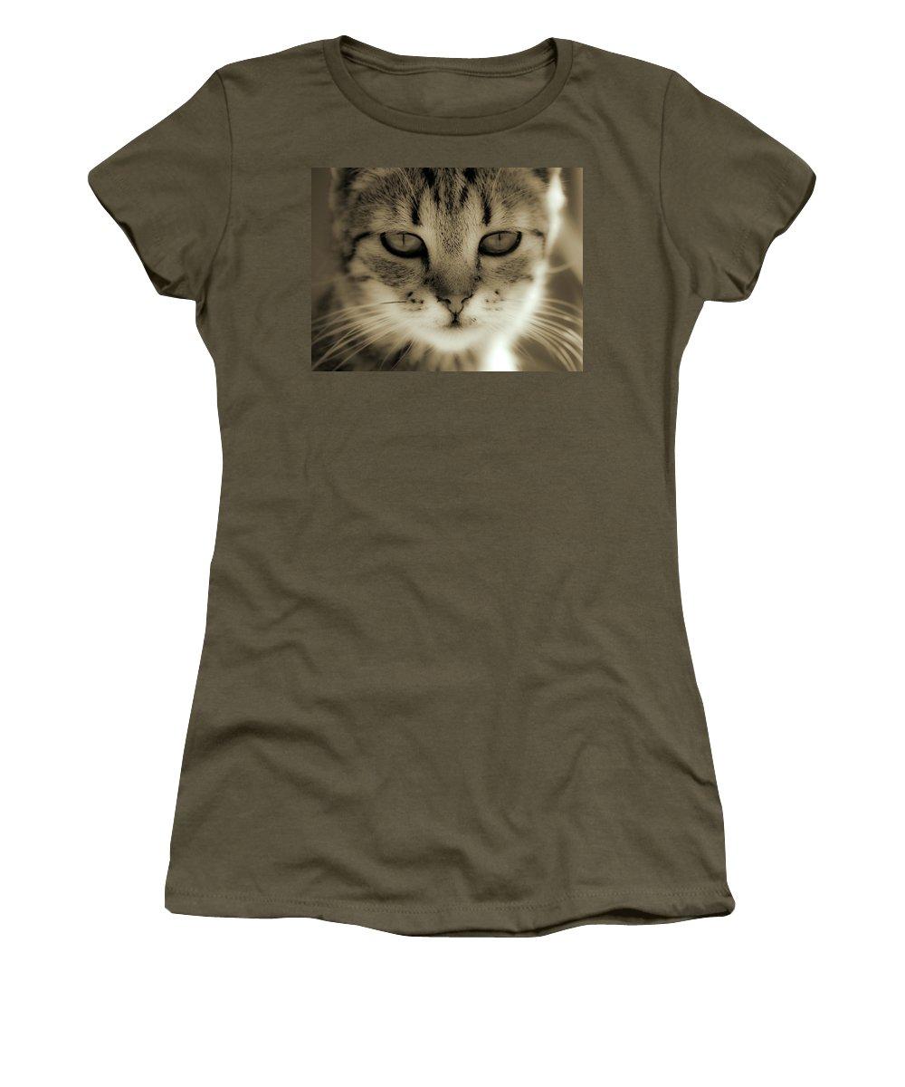 Cat Women's T-Shirt (Athletic Fit) featuring the photograph Portrait by Daniel Csoka