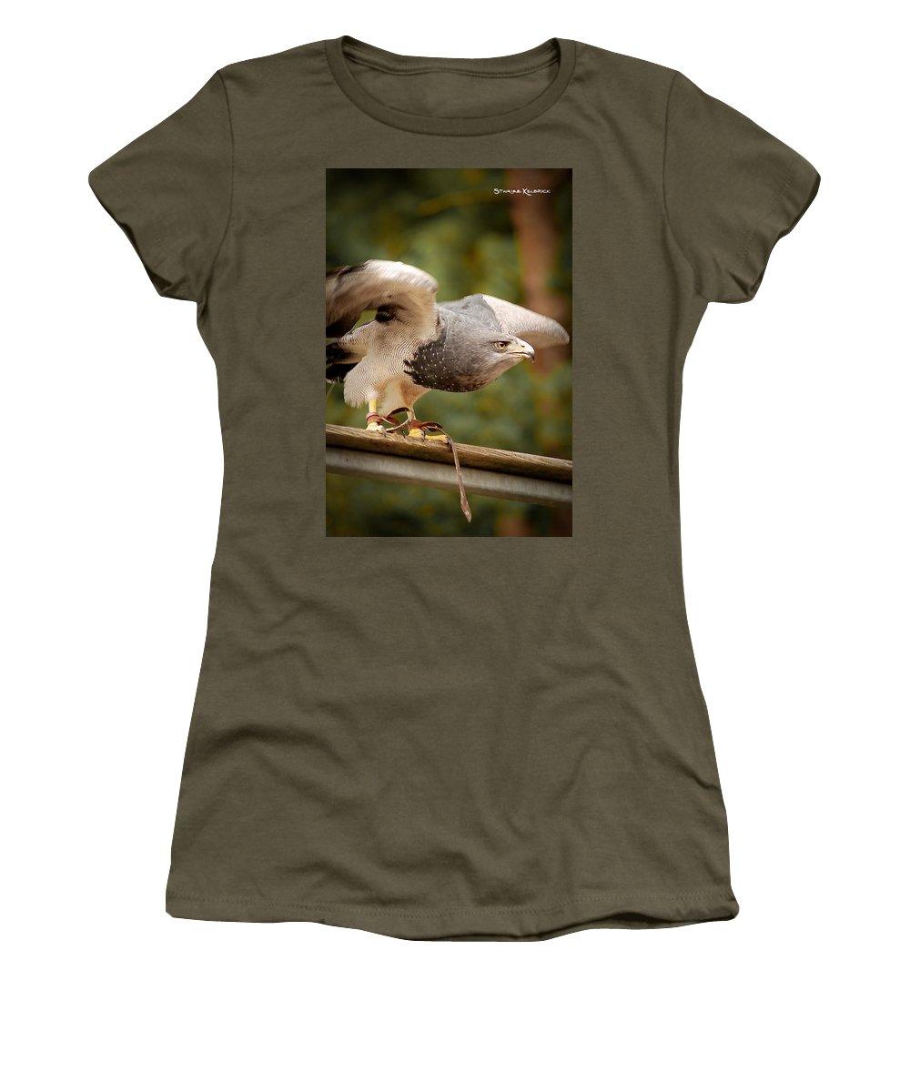 Animals Women's T-Shirt (Athletic Fit) featuring the photograph Predator's Raise by Stwayne Keubrick