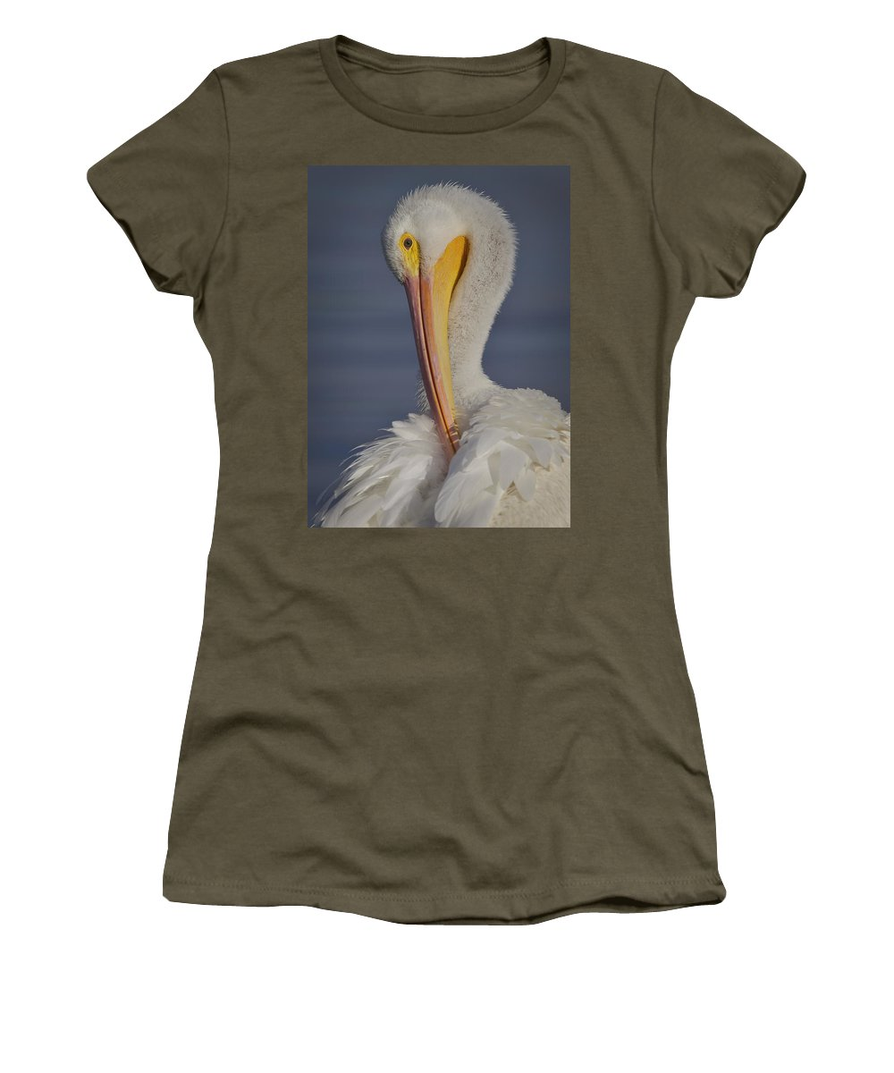 Bird Women's T-Shirt featuring the photograph Preening Feather Fluff Beauty by Leslie Reagan - Joy To The Wild Photos