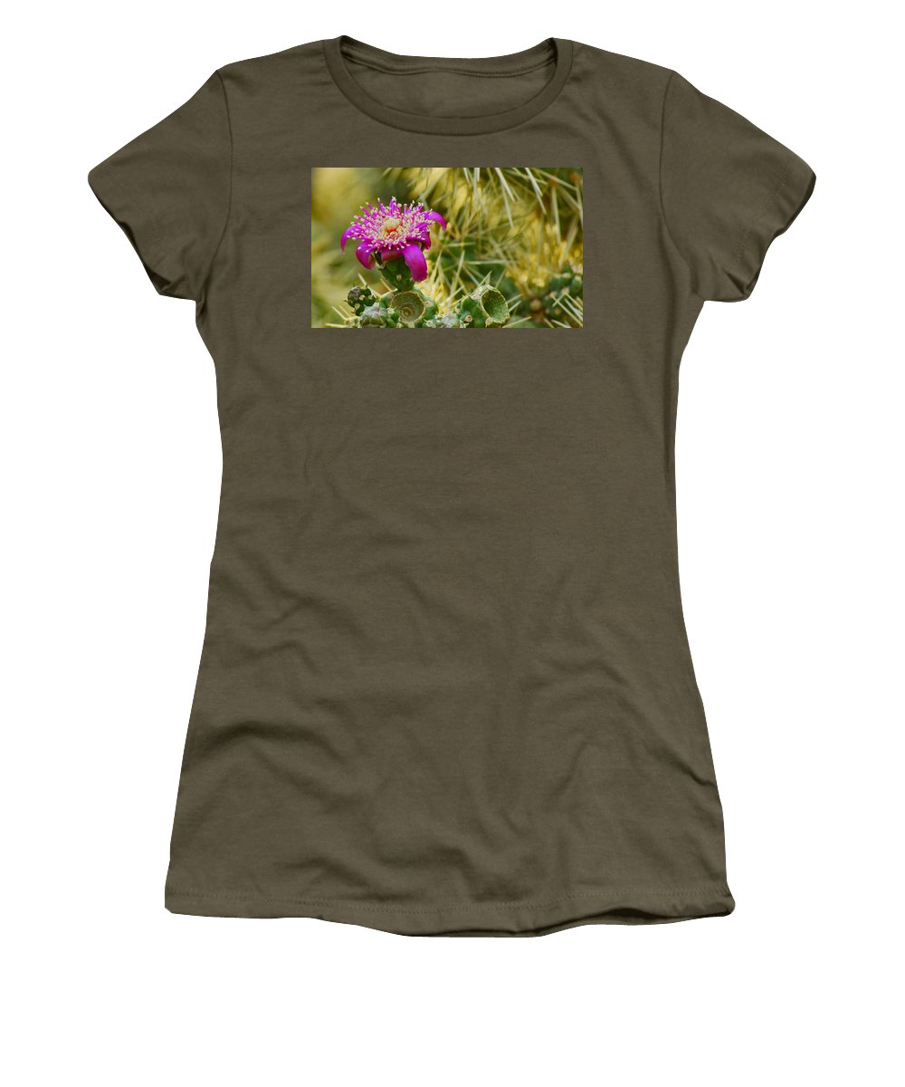 Flower Women's T-Shirt featuring the photograph Pretty In Pink Too by Patrick Moore