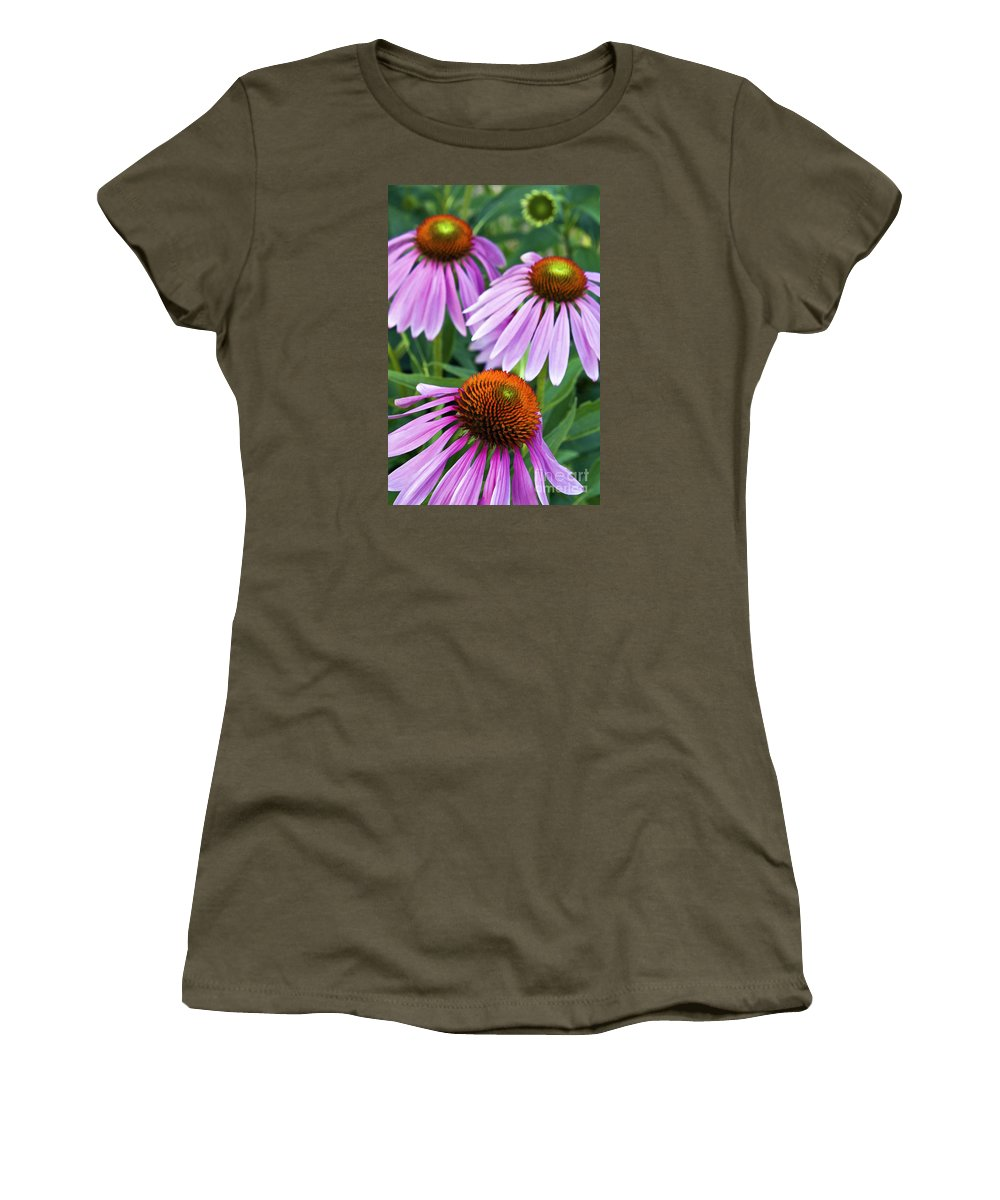 Painting Women's T-Shirt featuring the photograph Purple Coneflowers - D007649a by Daniel Dempster